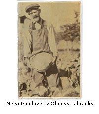 Olinův největší úlovek ze zahrádky - byl to vášnivý pěstitel